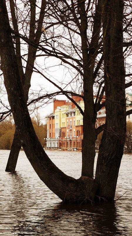 http://img-fotki.yandex.ru/get/5604/art-pushka.6a/0_54b74_33283ccc_XL.jpg