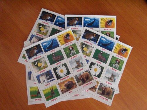 Таблицы с готовыми заготовками карточек Домана