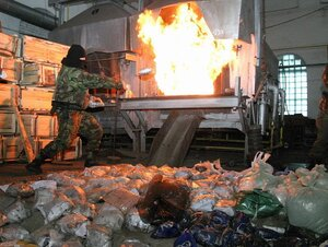 В Приморье ликвидирован гашишный заводик