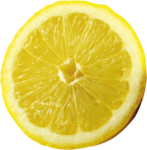 lisete_tropicalpunch_elements (34).png