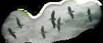 Птицы  разные  0_81f09_fc149534_S