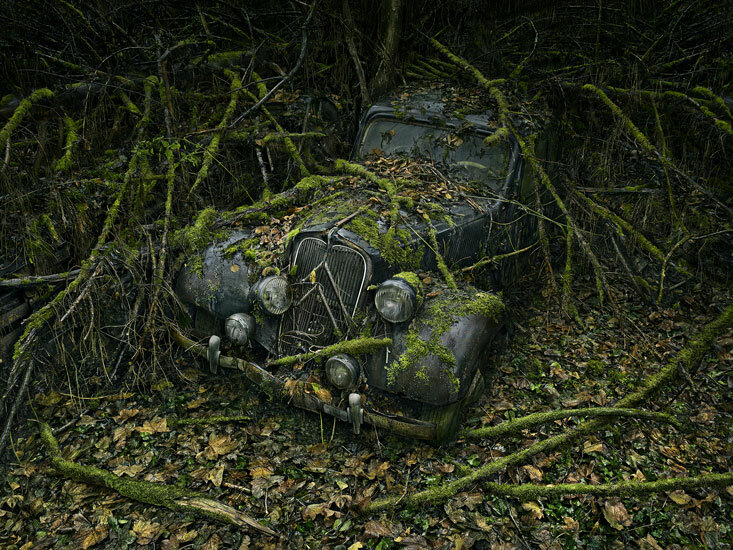 Фотограф Peter Lippmann