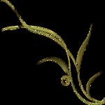 pbj_lkfl_foliage8.png