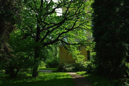лето в ботаническом