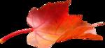 priss_flutteringleaves_redleaf.png