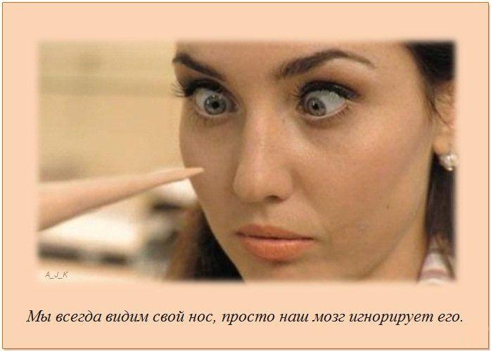http://img-fotki.yandex.ru/get/5606/130422193.e8/0_76038_ed6bbacf_orig
