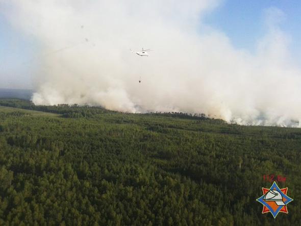 Лесной пожар в Осиповичском районе тушат три вертолета