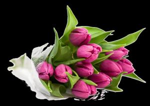 http://img-fotki.yandex.ru/get/5606/27302857.ab/0_79b0d_90d773c1_M.png