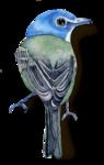 Птицы  разные  0_81f1d_2dd037e9_S