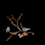 Птицы  разные  0_81f33_67d669ef_S