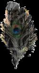element7_kittyscrap.png