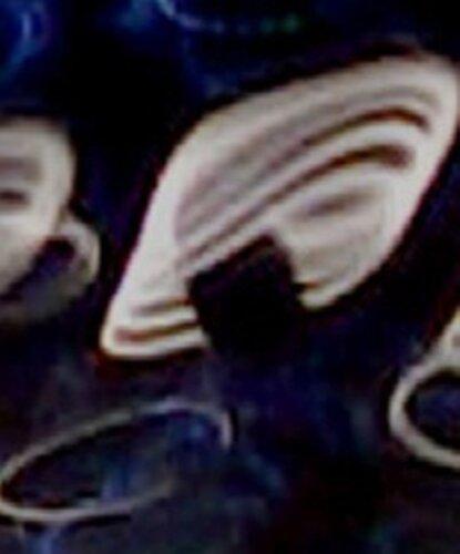 Вихревой сегмент структуры материи