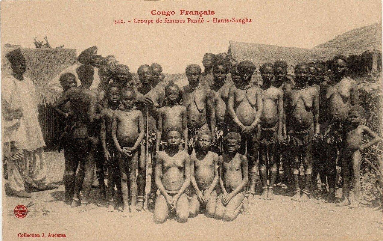 Французское Конго. Группа женщин народности панде