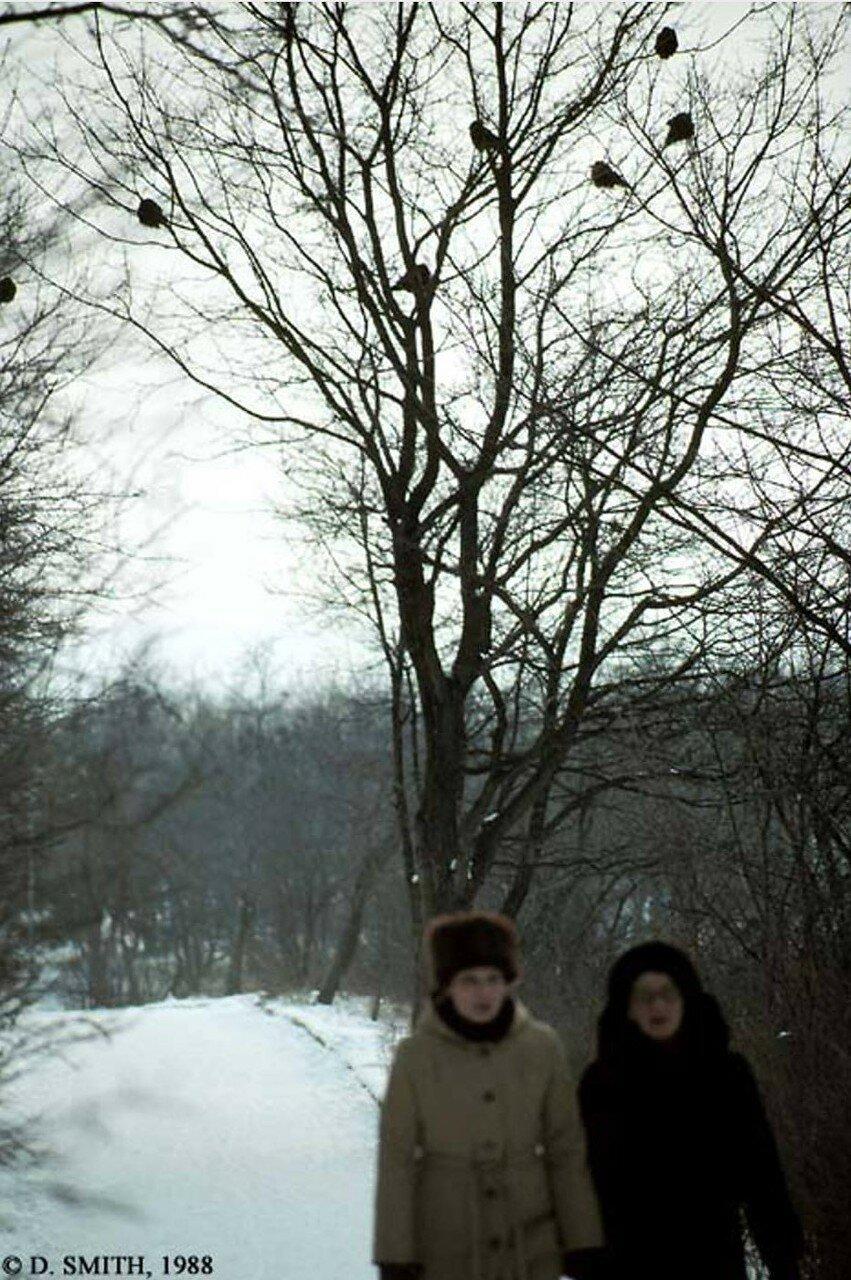 Пятигорск. Зима