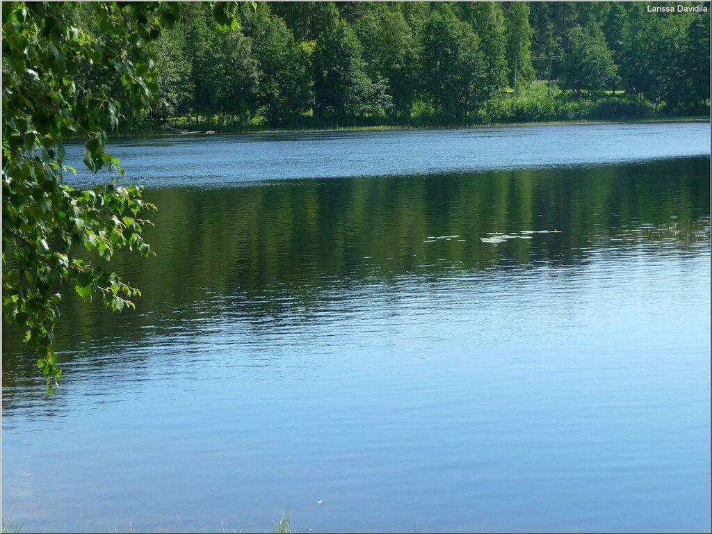 Verla-река Кюми.