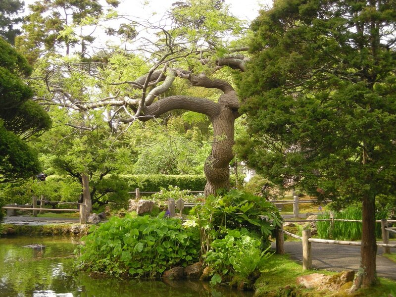 Серия сообщений парки и сады