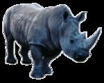 африка животные 0_662fe_dc648043_S