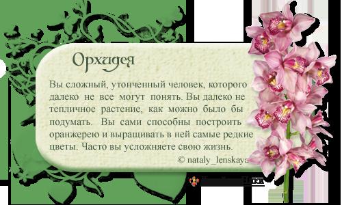 0_6e0ec_de3ff05_orig
