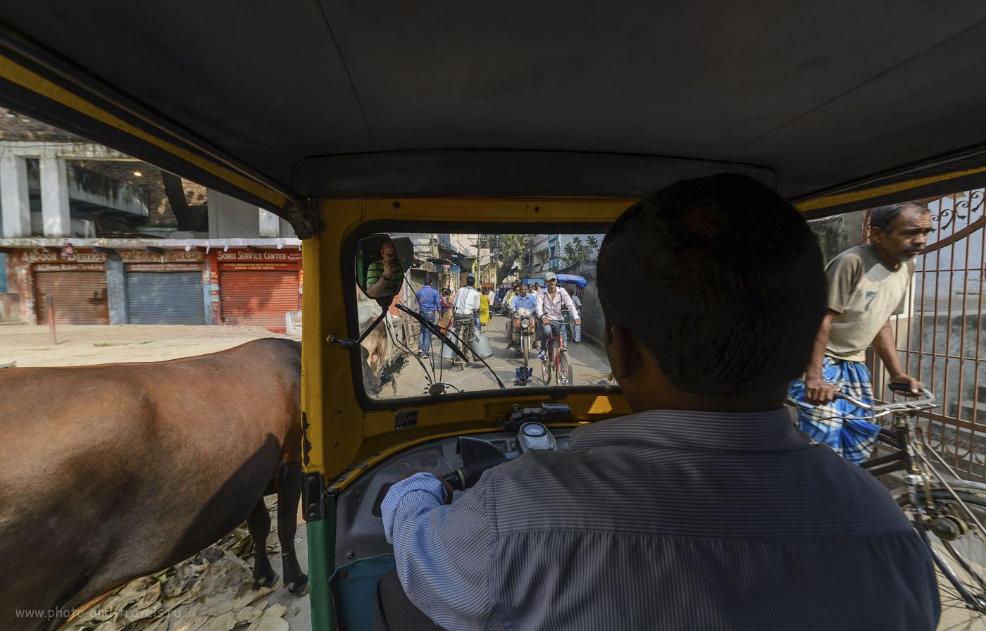 Фото 8. Туры в Индию. Отзыв о самостоятельном путешествии. На улицах Варанаси – вся страна в одном кадре. (камера Nikon D610, объектив Samyang 14/2.8, параметры съемки: 1/400, -1.33 EV, 7.1, 320, 14)