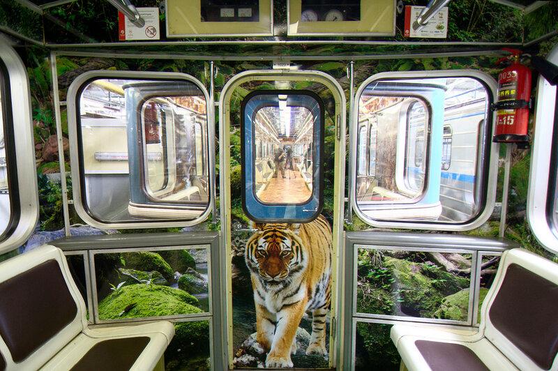 И ещё один амурский тигр