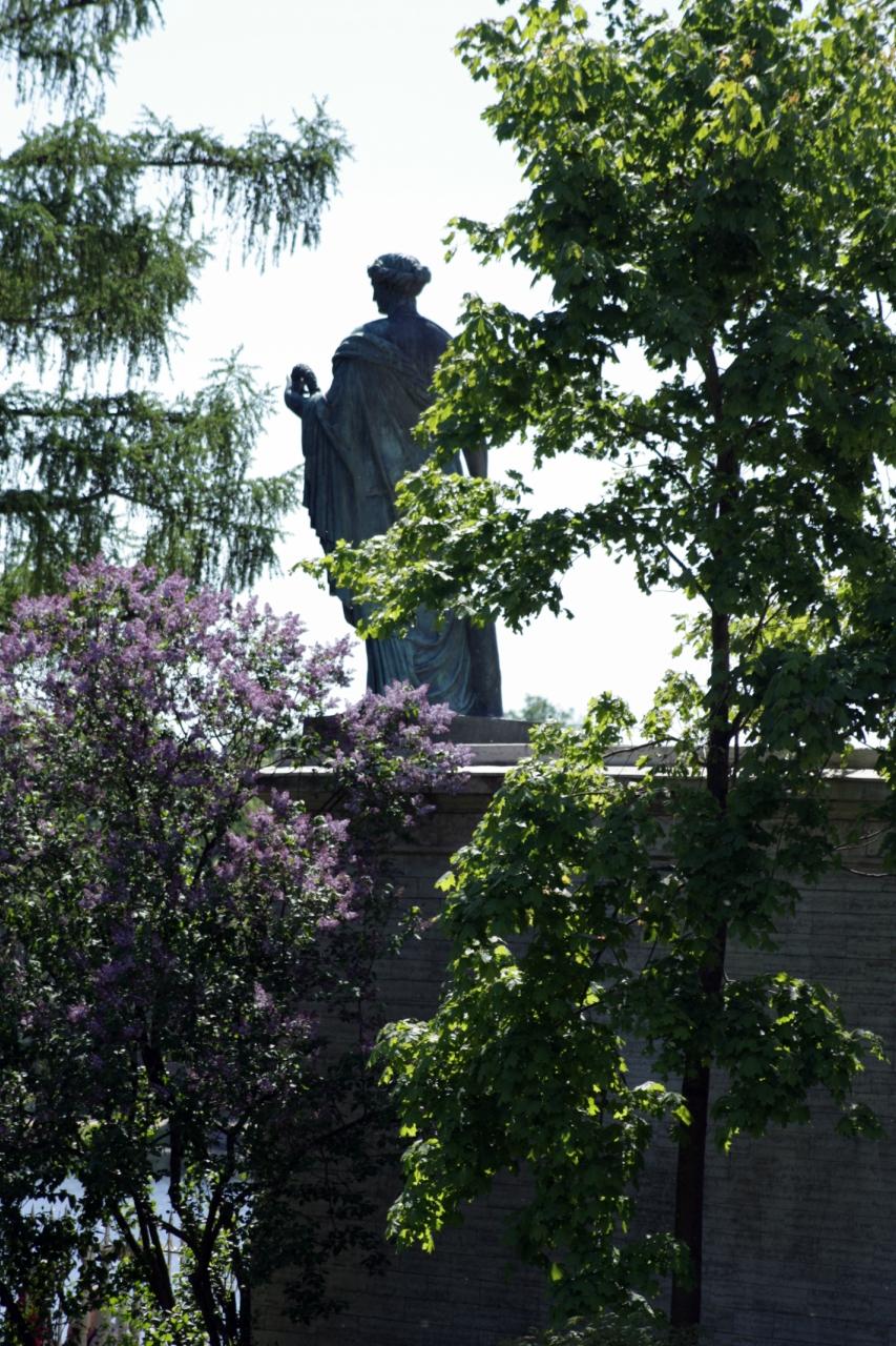 Статуя в цвету.