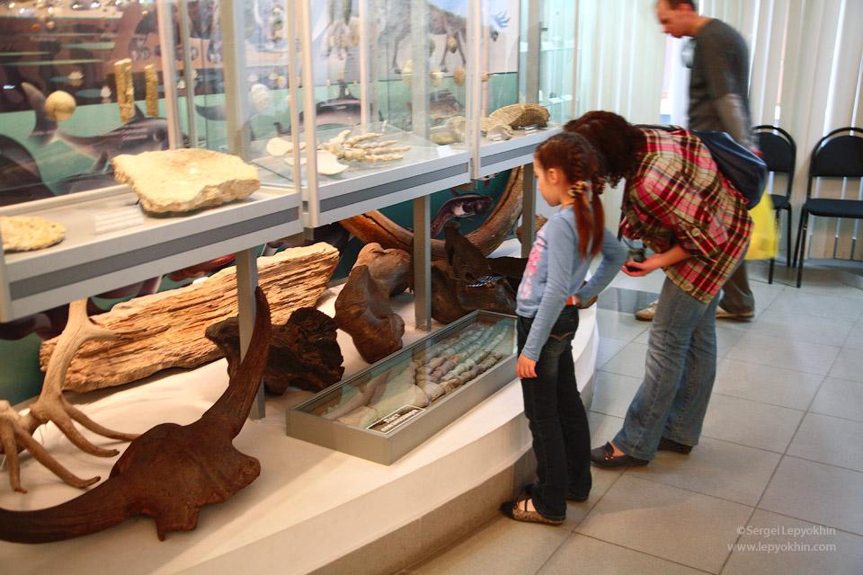 Люди были самые разные, многие пришли в музей первый раз. Акция «Ночь в музее» в Волгоградском областном краеведческом музее.