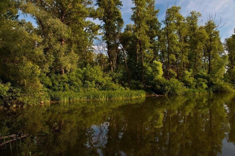 Озеро Березка.Гидропарк