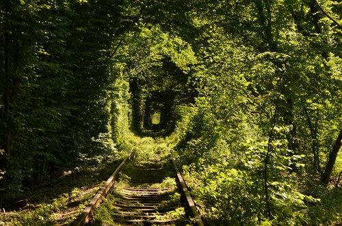 Клевань: тоннель любви
