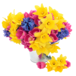 flower (4).png