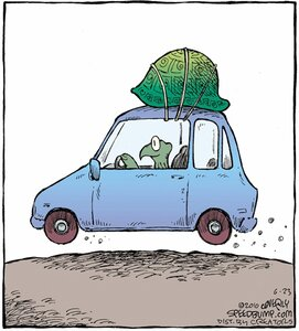 черепаха, автомобиль