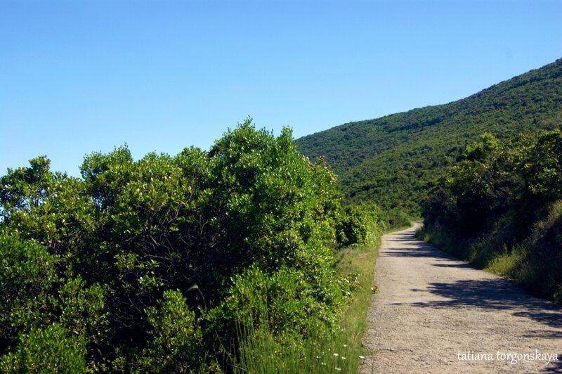 Дорога к церкви Св. Ильи