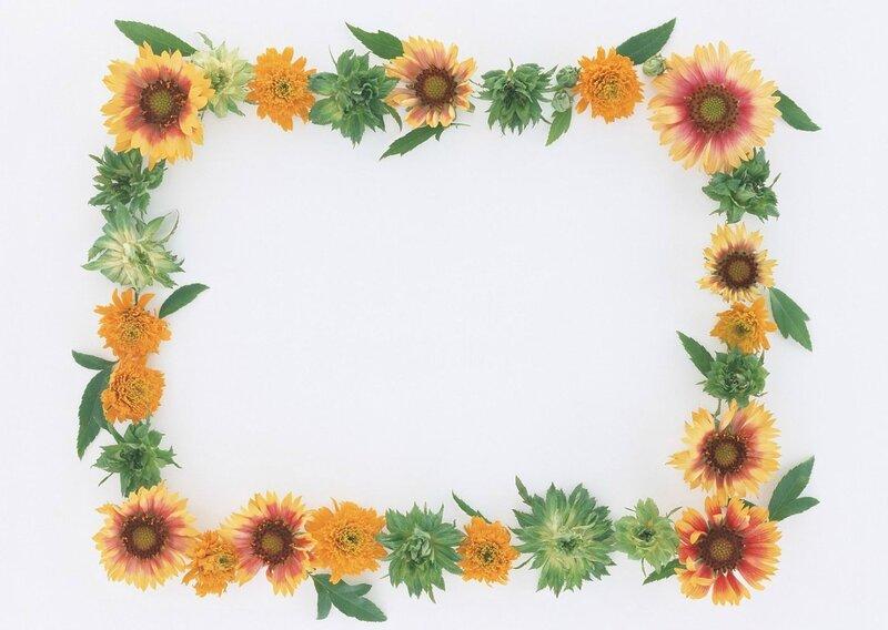 Рамки из цветов картинки 6