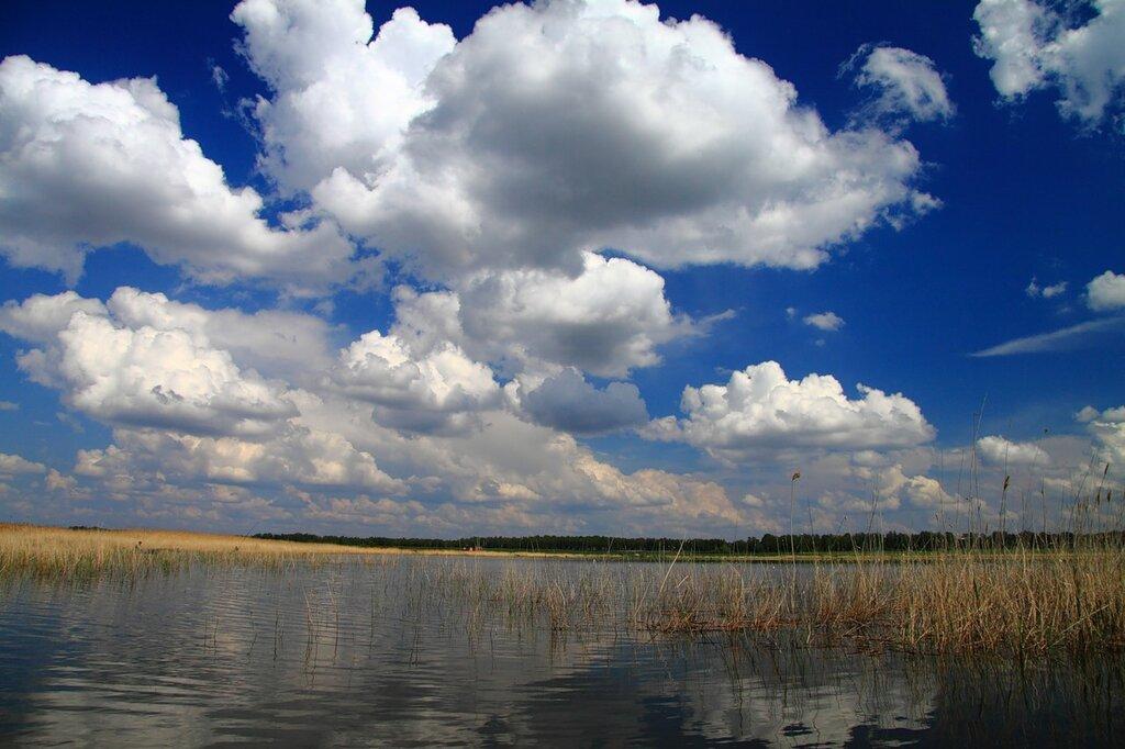 http://img-fotki.yandex.ru/get/5608/strekosha.2/0_53502_98a5b1f4_XXL.jpg