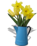 FLOWERS IN WATERING CAN.png