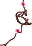 «романтический сад» 0_64902_786f9965_S