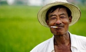 Китайцы создадут в Приморье мутантов