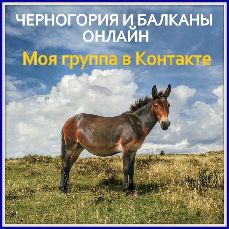 фото и видео о Черногории онлайн