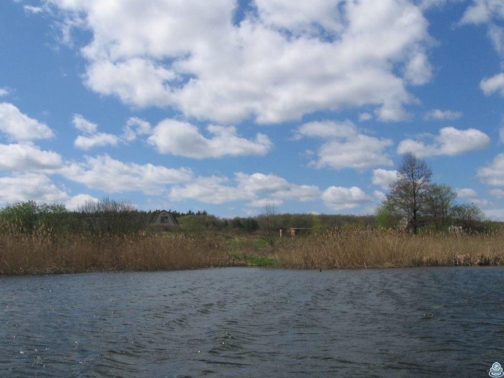 Берег реки Боромля