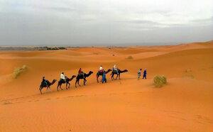 Пасмурный день в пустыне