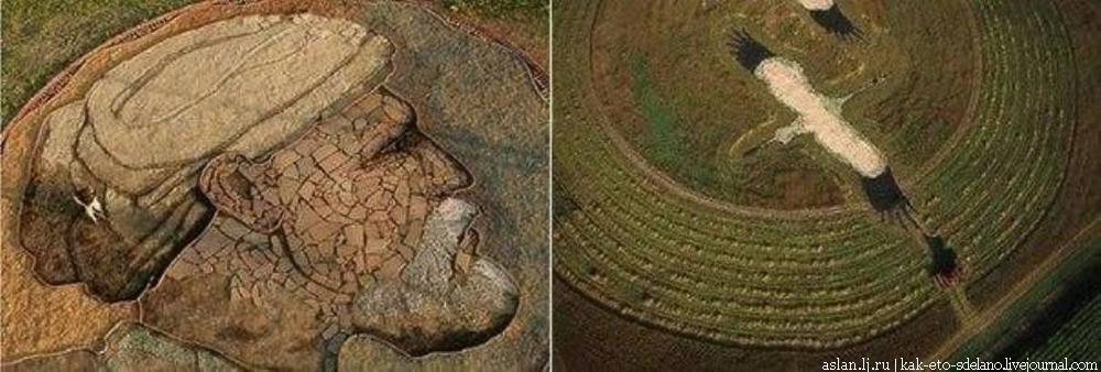 Картины на полях Стэна Хёрда