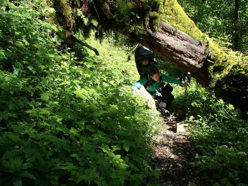 пеший поход по лесу с ребенком (1 год) в рюкзаке Deuter