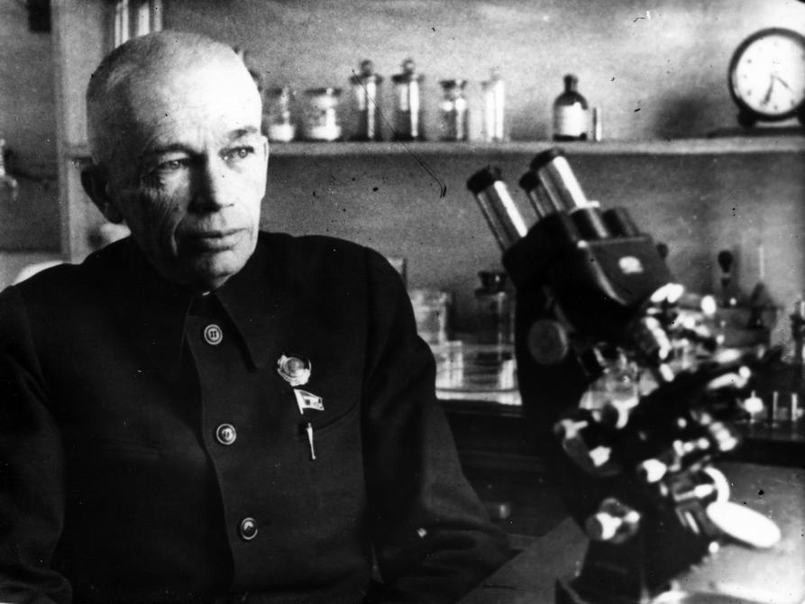 1945-1946. А.А.Богомолец - Герой Социалистического Труда, президент Академии Наук УССР в рабочем кабинете