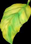 NLD Leaf (5).png