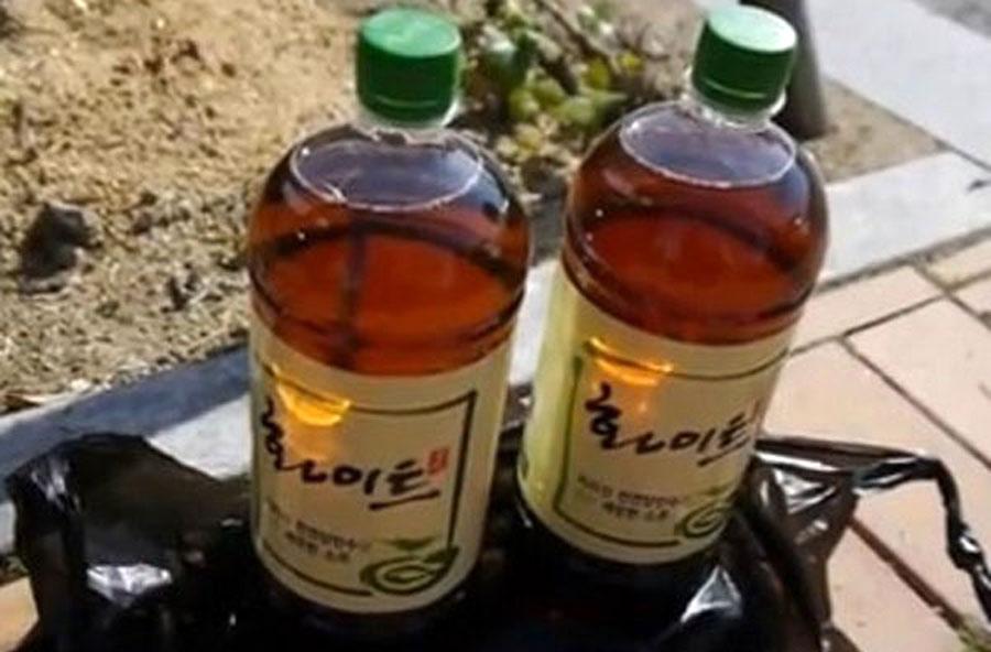 Цсонгсул - Самые странные алкогольные напитки нашего времени