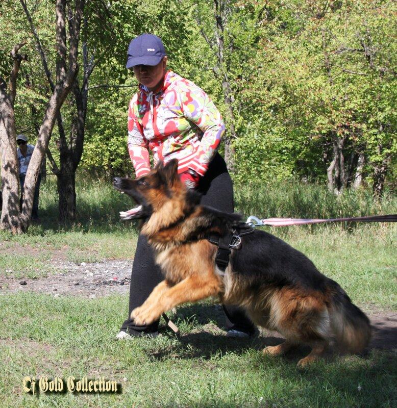 http://img-fotki.yandex.ru/get/5624/134559744.c/0_9102b_60fff38b_XL.jpg