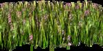 Lug_Grass_Flower (8).png
