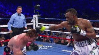 Реакция боксера