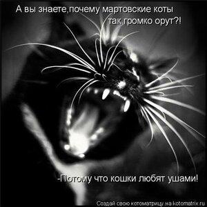 http://img-fotki.yandex.ru/get/5624/194408087.2/0_9196c_ca9571ec_M.jpeg.jpg