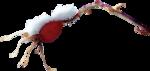 ldavi-feathersandmittens-snowyrosehip3.png