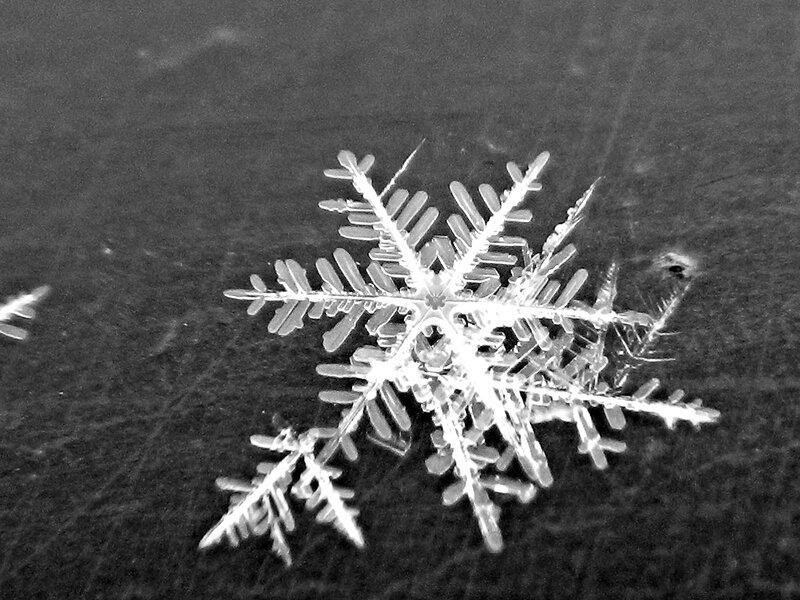 снежинка DSCN1242.jpg